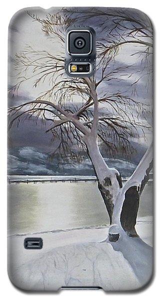 Winter's Whisper Galaxy S5 Case