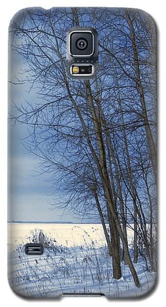 Wintertime At Sheldon Marsh Galaxy S5 Case by Shawna Rowe