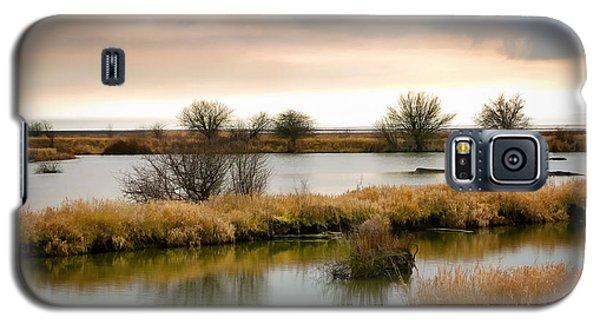 Galaxy S5 Case featuring the photograph Wintery Wetlands by Jordan Blackstone