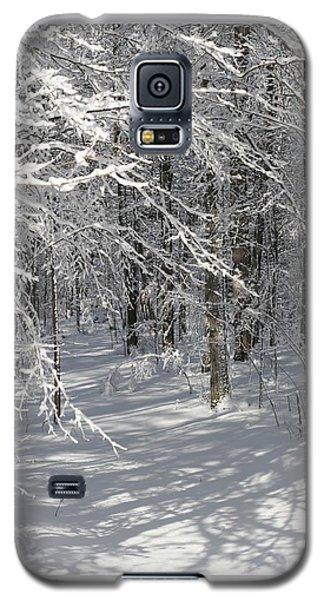 Wintery Woodland Shadows Galaxy S5 Case by Patricia Overmoyer