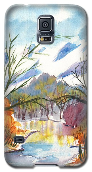Wintry Reflections Galaxy S5 Case