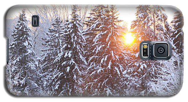 Wintry Sunset Galaxy S5 Case