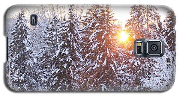 Wintry Sunset Galaxy S5 Case by Larry Ricker