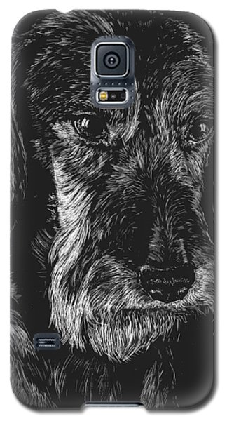Galaxy S5 Case featuring the drawing Wire Haired Dachshund by Rachel Hames