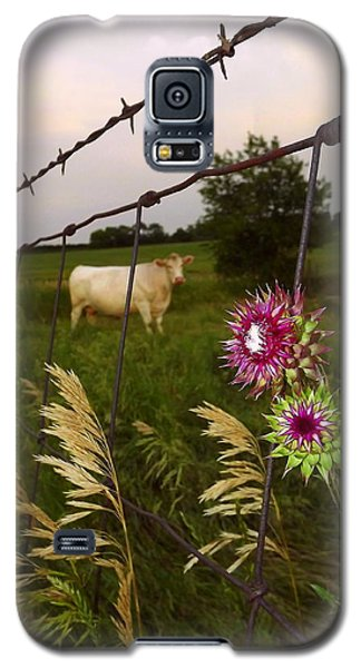 Wisconsin Evening Galaxy S5 Case