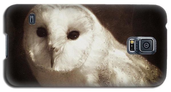 Wisdom Of An Owl Galaxy S5 Case