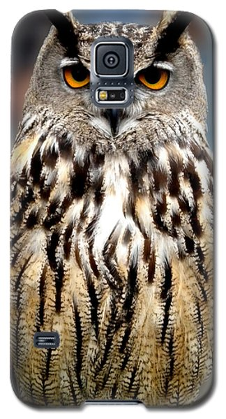 Wise Forest Mountain Owl Spain Galaxy S5 Case