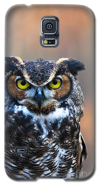 Wise Guy Galaxy S5 Case by Geri Glavis