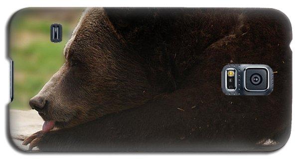 Galaxy S5 Case featuring the photograph Wish I Was A Polar Bear by B Wayne Mullins
