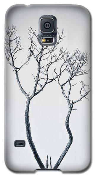 Wishbone Tree Galaxy S5 Case