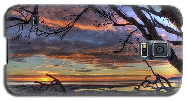Wishing Branch Sunset Galaxy S5 Case