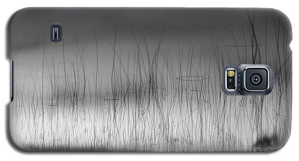 Wispy Reeds Galaxy S5 Case