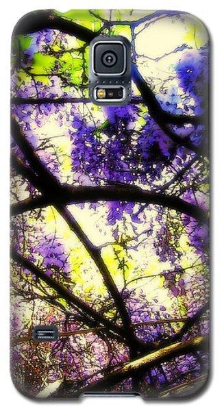 Wisteria Branches Galaxy S5 Case