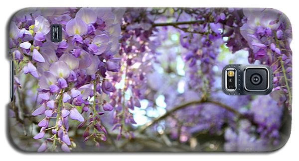 Wisteria Dream Galaxy S5 Case by Cathy Dee Janes