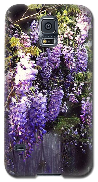 Galaxy S5 Case featuring the photograph Wisteria Dreaming by Leanne Seymour