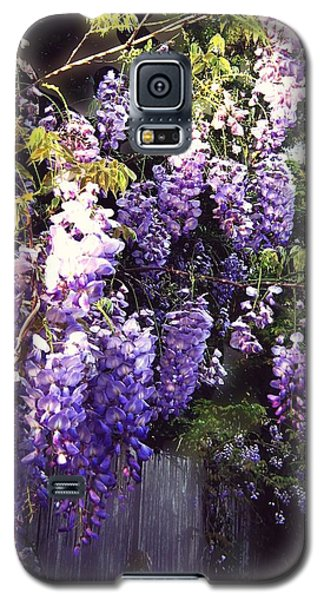 Wisteria Dreaming Galaxy S5 Case by Leanne Seymour