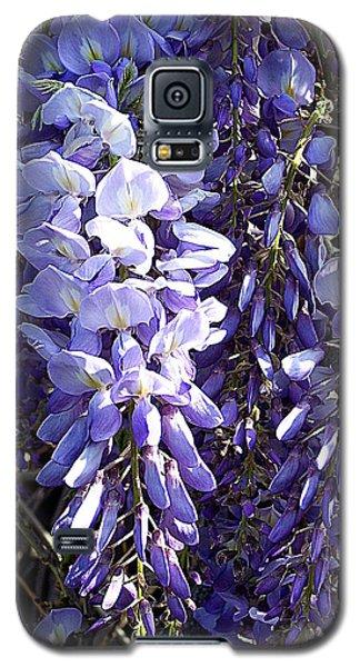 Galaxy S5 Case featuring the photograph Wisteria II by Jodie Marie Anne Richardson Traugott          aka jm-ART