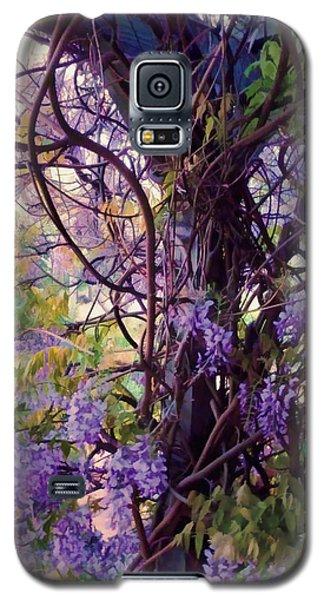 Wisteria Shade And Sun Galaxy S5 Case by Douglas MooreZart