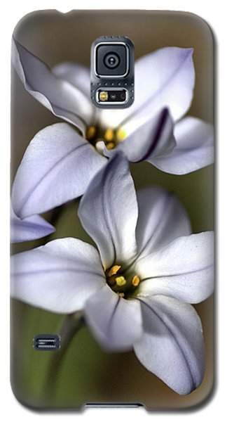 Galaxy S5 Case featuring the photograph With Company by Joy Watson