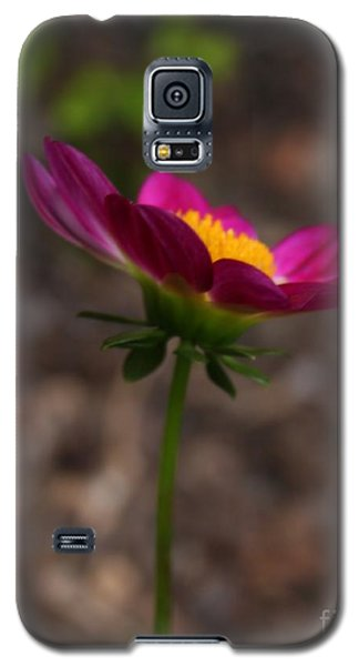 Galaxy S5 Case featuring the photograph With Kindness by Geri Glavis