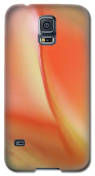 Galaxy S5 Case featuring the photograph With Love by Annie Snel