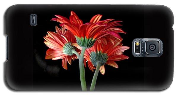 With Love Galaxy S5 Case by Brenda Pressnall