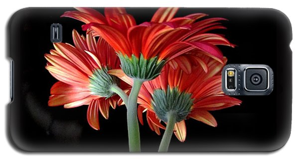 Galaxy S5 Case featuring the photograph With Love by Brenda Pressnall