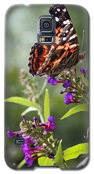With These Wings Galaxy S5 Case by Geri Glavis