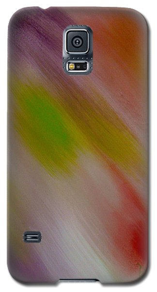 Within The Rainbow Galaxy S5 Case