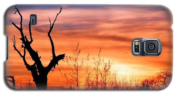 Galaxy S5 Case featuring the photograph Witness Of The Beauty by Rima Biswas