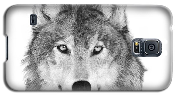 Galaxy S5 Case featuring the drawing Wolf - 004 by Abbey Noelle