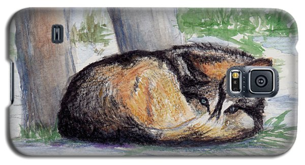 Galaxy S5 Case featuring the painting Wolf At Rest by Brenda Thour