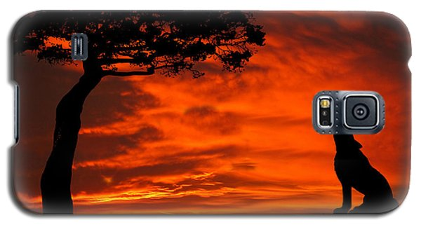 Wolf Calling For Mate Sunset Silhouette Series Galaxy S5 Case