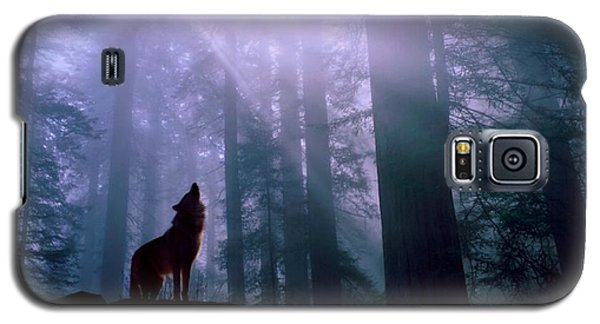 Wolf In The Woods Galaxy S5 Case