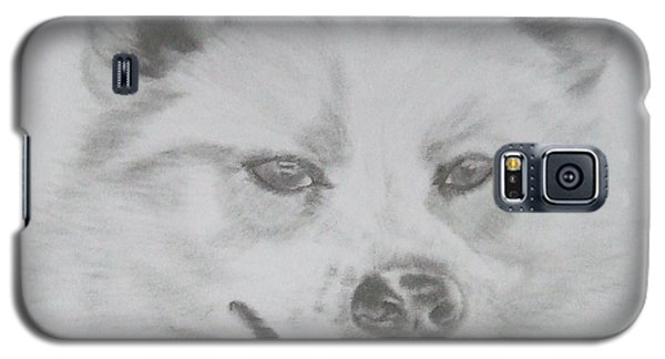 Wolf The Husky Galaxy S5 Case