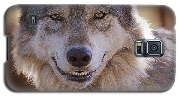 Wolf's Smile  Galaxy S5 Case