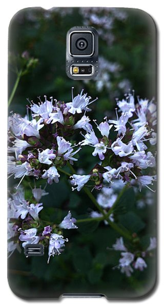 Galaxy S5 Case featuring the photograph Wonder Of Nature by Lucy D