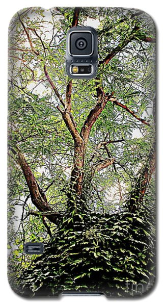 Galaxy S5 Case featuring the photograph Wonder by Ruth Jolly