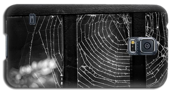 Spider Galaxy S5 Case - Wonder Web by Carrie Ann Grippo-Pike