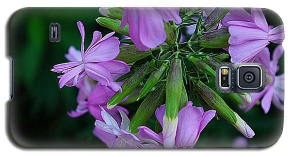 Galaxy S5 Case featuring the photograph Wonderful Morning Flower by John S