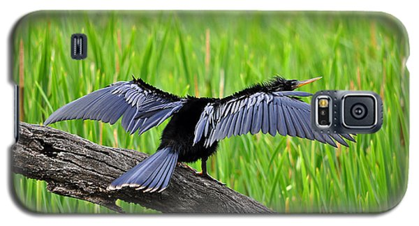 Wonderful Wings Galaxy S5 Case by Al Powell Photography USA