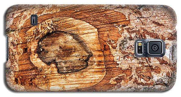 Wood Detail Galaxy S5 Case