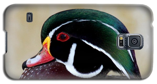 Galaxy S5 Case featuring the photograph Wood Duck 1 by Bob and Jan Shriner