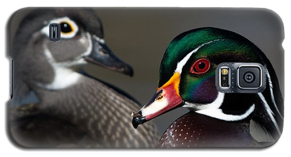 Wood Duck Pair Galaxy S5 Case