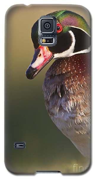 Galaxy S5 Case featuring the photograph Wood Duck Portrait by Bryan Keil