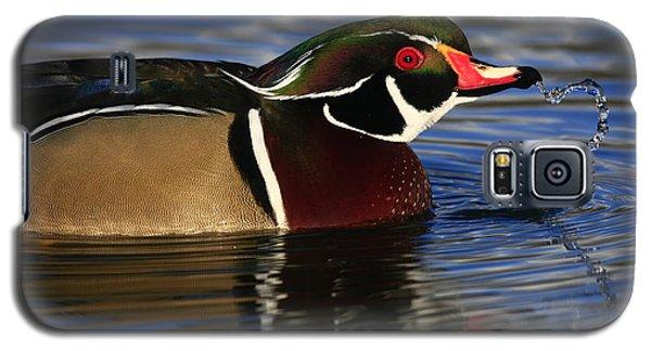 Wood Duck Waterdrops Galaxy S5 Case