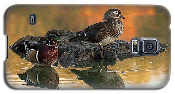 Wood Ducks Galaxy S5 Case
