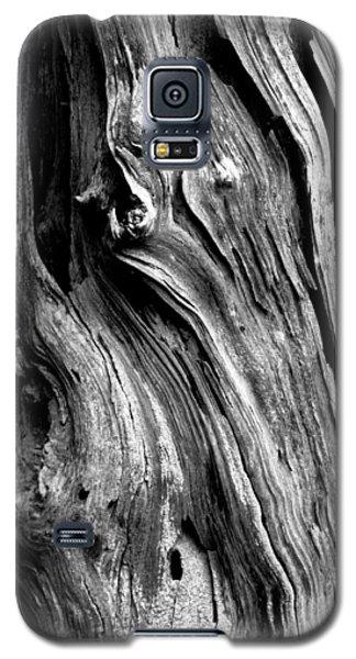 Wood Galaxy S5 Case by Shane Holsclaw