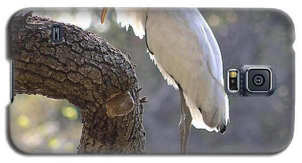 Galaxy S5 Case featuring the photograph Wood Stork At Magnolia Cemetery    Tery by Jeanne Kay Juhos
