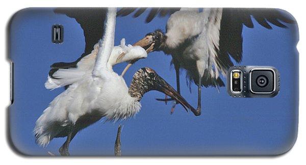 Wood Stork Fight Galaxy S5 Case